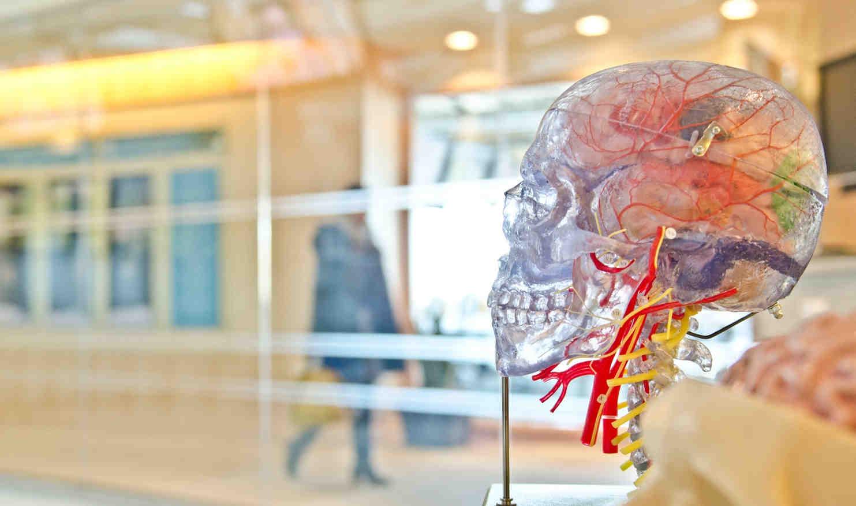 smartengeld hersenletsel