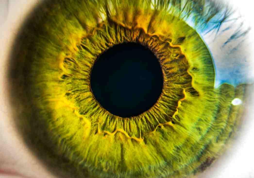 Smartengeld blindheid en verlies aan zicht
